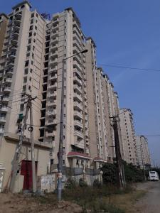 Gallery Cover Image of 1420 Sq.ft 3 BHK Apartment for rent in Amrapali Silicon City, Sector 76 for 18000