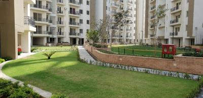 Project Image of 0 - 1843.0 Sq.ft 3 BHK Apartment for buy in Umang Winter Hills