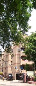 Gallery Cover Pic of CGHS Hewo Apartment