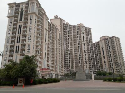 Gallery Cover Image of 1750 Sq.ft 3 BHK Independent Floor for rent in DLF Regal Gardens, Sector 90 for 20000