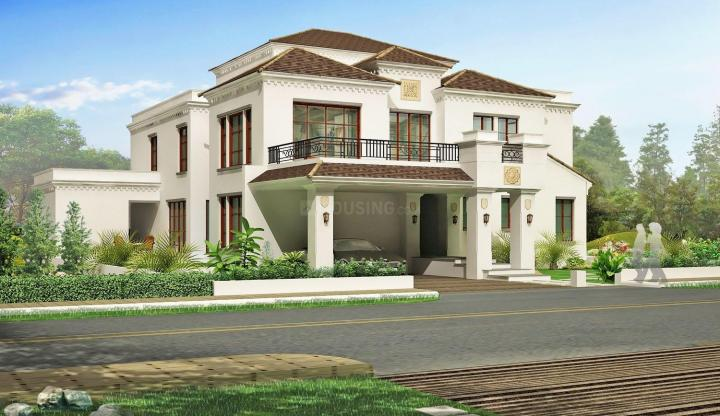 Royal Palm Villa Developer