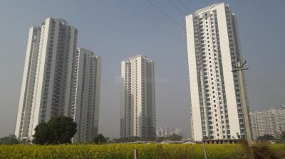 Gallery Cover Image of 2800 Sq.ft 4 BHK Apartment for buy in DLF The Ultima, Sector 81 for 22000000