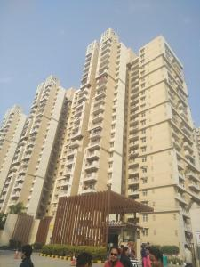 Gallery Cover Image of 1050 Sq.ft 2 BHK Apartment for rent in Mahagun Mywoods Phase 3, Noida Extension for 10000