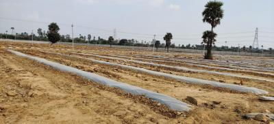 1881 Sq.ft Residential Plot for Sale in Sheriguda, Hyderabad