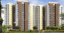 मतंगी अपार्टमेंट्स के गैलरी कवर की तस्वीर