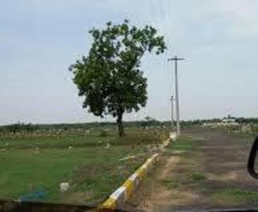 Project Image of 725.0 - 4000.0 Sq.ft Residential Plot Plot for buy in Miracle Gated Community Plots