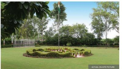 Project Image of 0 - 3231.0 Sq.ft Residential Plot Plot for buy in Jindal Global City Plots