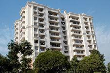 Gallery Cover Image of 1600 Sq.ft 3 BHK Apartment for rent in Sector 39 for 28000