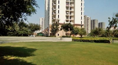 Gallery Cover Image of 1930 Sq.ft 3 BHK Apartment for rent in DLF New Town Heights 3, Sector 91 for 17000