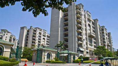 Gallery Cover Image of 2800 Sq.ft 4 BHK Apartment for rent in Sector 93A for 60000