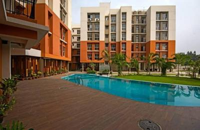Project Image of 510.0 - 735.0 Sq.ft 2 BHK Apartment for buy in White Meadows