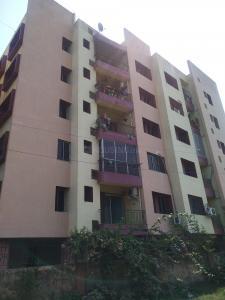पिनॅकल माया मंज़िल में खरीदने के लिए 0 - 528 Sq.ft 2 BHK अपार्टमेंट प्रोजेक्ट  की तस्वीर