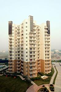 Gallery Cover Image of 2350 Sq.ft 3 BHK Apartment for rent in BPTP Freedom Park Life, Sector 57 for 43000