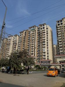 Gallery Cover Image of 1100 Sq.ft 2 BHK Apartment for rent in Amrapali Silicon City, Sector 76 for 20000