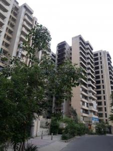 Gallery Cover Image of 1288 Sq.ft 2 BHK Apartment for rent in Jaipuria Apartment, Dhakoli for 30000