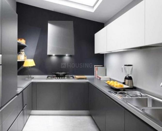 Alba Kitchens Reviews