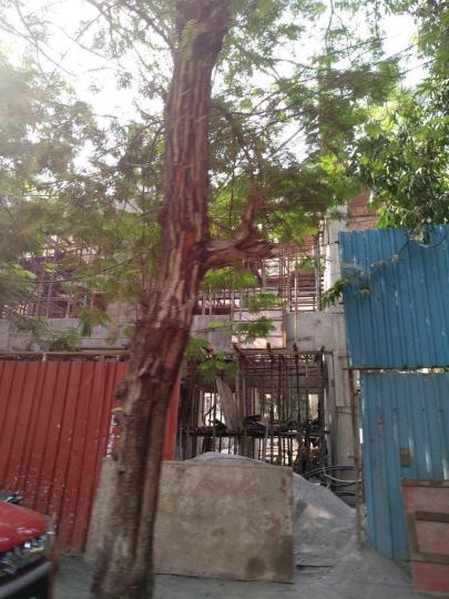 Gallery Cover Pic of Tolaram Kukreja Gardens Wing B