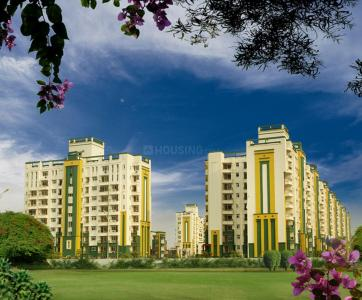 Project Images Image of Home PG in Omega II Greater Noida