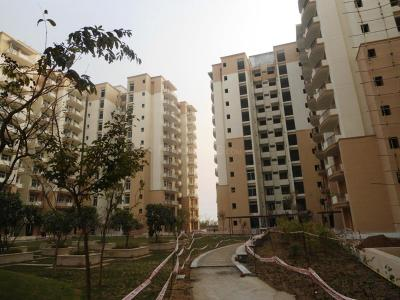Gallery Cover Image of 1550 Sq.ft 3 BHK Apartment for buy in Tulip Petals by Tulip Infratech Pvt Ltd, Sector 89A for 8000000