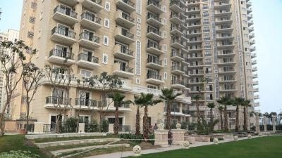 Gallery Cover Image of 1200 Sq.ft 2 BHK Apartment for rent in Ace Golf Shire, Sector 150 for 15000