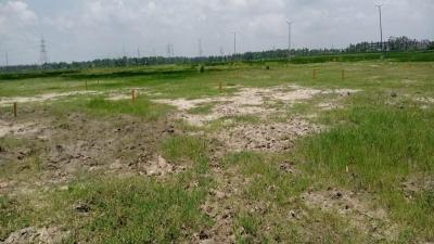 Project Image of 1440.0 - 7200.0 Sq.ft Residential Plot Plot for buy in Bashbhumi Green View