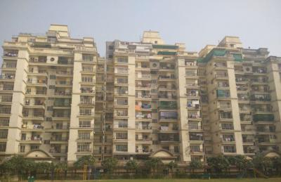 Gallery Cover Image of 1500 Sq.ft 1 RK Independent Floor for rent in Shipra Krishna Vista, Ahinsa Khand for 60000