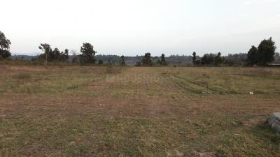 Project Image of 0 - 899.97 Sq.ft Residential Plot Plot for buy in Sarahna Defence Colony Prem Nagar