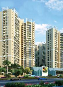 Gallery Cover Image of 1300 Sq.ft 3 BHK Apartment for rent in Ajnara Le Garden, Sector 67 for 15000