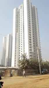 Gallery Cover Image of 2100 Sq.ft 3 BHK Apartment for buy in DLF The Ultima, Sector 81 for 14000000