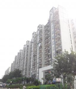 Gallery Cover Image of 200 Sq.ft 1 RK Apartment for buy in Tulip White, Sector 69 for 800000