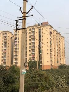 Gallery Cover Image of 1135 Sq.ft 2 BHK Apartment for rent in Shiv Park 1 Apartments, Neharpar Faridabad for 8900