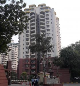 Gallery Cover Image of 1640 Sq.ft 3 BHK Apartment for rent in Unitech The Palms, Sector 41 for 55000