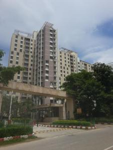 Gallery Cover Image of 1737 Sq.ft 3 BHK Apartment for rent in PI Greater Noida for 13000
