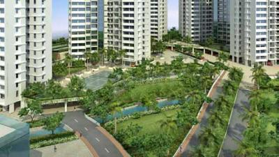 Project Images Image of Comfort PG Service in Hinjewadi