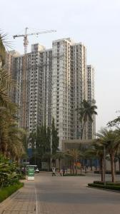 Project Image of 0 - 950.0 Sq.ft 3 BHK Apartment for buy in Lodha Amara 3 Bhk With Deck