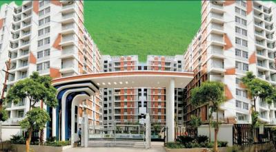 Project Image of 620.0 - 1995.0 Sq.ft 1 BHK Apartment for buy in RG Euphoria
