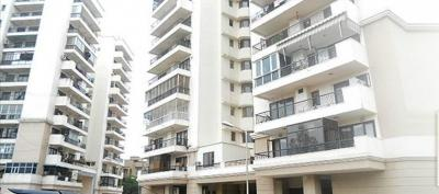 Gallery Cover Image of 1600 Sq.ft 3 BHK Apartment for rent in Eros Kenwood Towers, Sector 39 for 28000