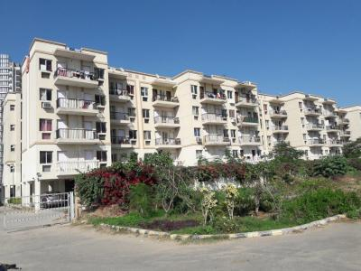 Gallery Cover Image of 1500 Sq.ft 3 BHK Apartment for rent in Sare Green Parc 2, Sector 92 for 14000