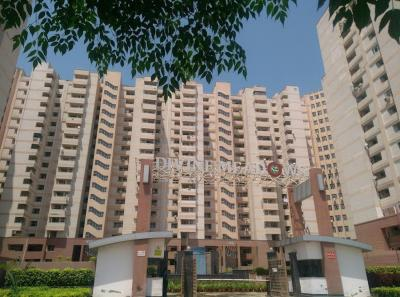 Gallery Cover Image of 1250 Sq.ft 3 BHK Apartment for rent in Divine Divine Meadows, Sector 108 for 25000