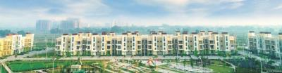 Gallery Cover Image of 1103 Sq.ft 3 BHK Apartment for rent in BPTP Parklands Pride, Sector 77 for 12000