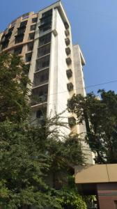 Project Images Image of Nitu in Andheri East