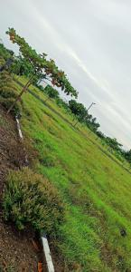 Project Image of 1163 - 2400 Sq.ft Residential Plot Plot for buy in Premier Water Way