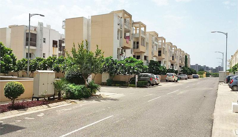 Project Image of 1250 Sq.ft 3 BHK Independent Floor for rentin Sector 85 for 14000