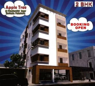 ELUMALAIYAN Apple Tree