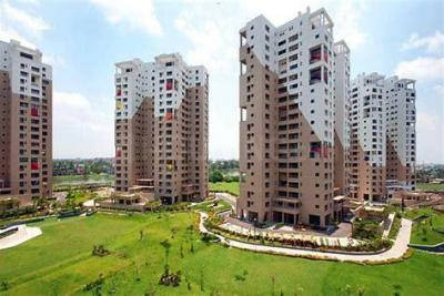 Gallery Cover Image of 850 Sq.ft 2 BHK Apartment for rent in Ambuja Upohar, Pancha Sayar for 20000