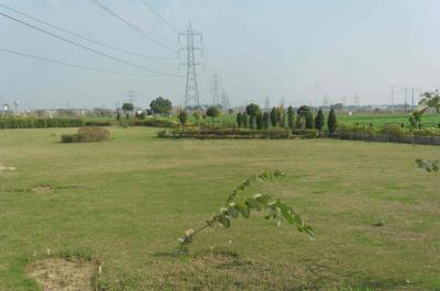Project Image of 1800 - 9000 Sq.ft Residential Plot Plot for buy in TDI City Plots 1