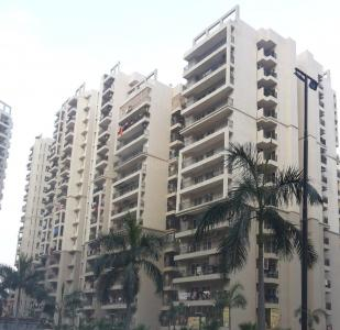 Gallery Cover Image of 1250 Sq.ft 3 BHK Apartment for rent in Galaxy North Avenue II, Noida Extension for 16000