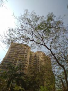 Gallery Cover Image of 1200 Sq.ft 2 BHK Apartment for rent in Powai for 64000
