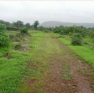 540 Sq.ft Residential Plot for Sale in Pilkhuwa, Ghaziabad
