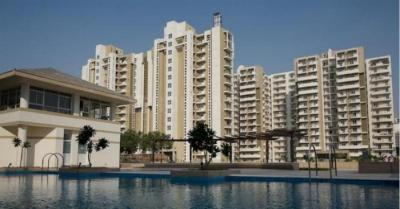 Gallery Cover Image of 2065 Sq.ft 3 BHK Apartment for rent in DLF Phase 5 for 50000